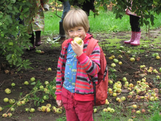 Deterings Orchard